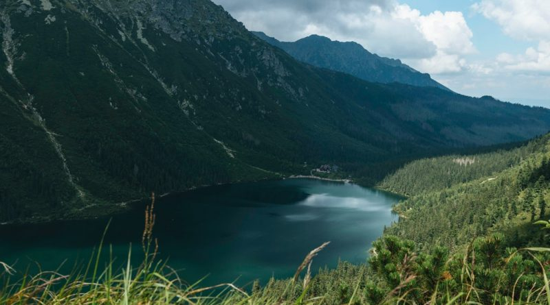 Une réserve naturelle